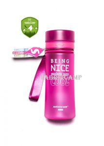 BEINC-NICE