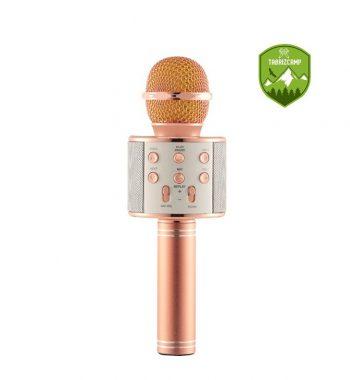 میکروفون اسپیکر وستر مدل ws858